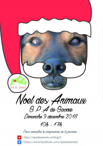 Affiche JPO Noël